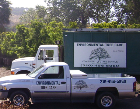 contact-environmental-tree-care-460x360